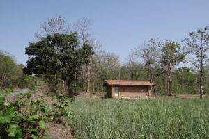 Дарение индивидуального жилого дома и земельного участка